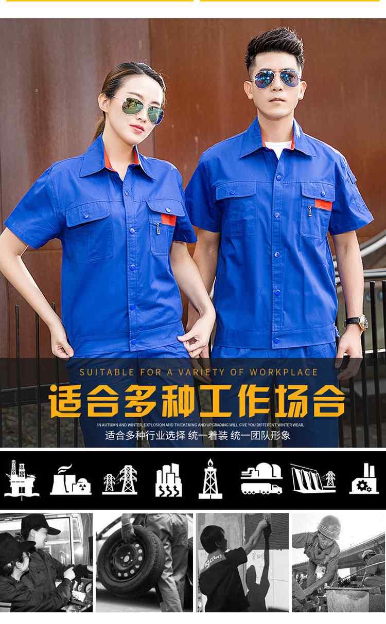 6纯棉小拉链衬衣领短袖3色_05.jpg
